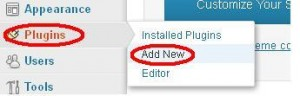 instal plugin SEO