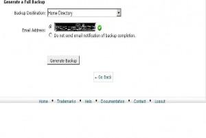 option backup data
