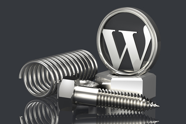 Setting Wp-config Pada Wordpress