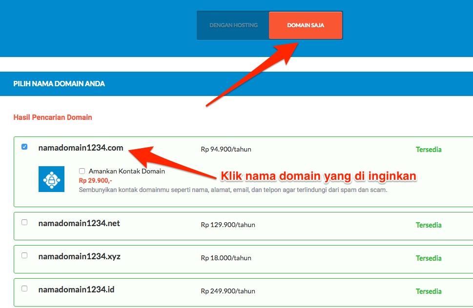Pilih Domain Saja