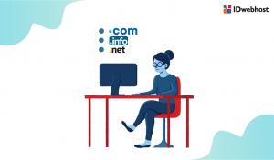 Nama Domain: Mengapa Anda Perlu Memilki Domain?