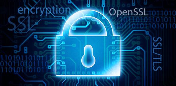 SSL dan Websecurity: Realita di Era Digital