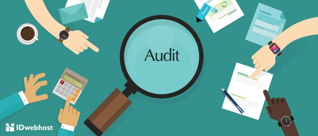 audit kegunaan website