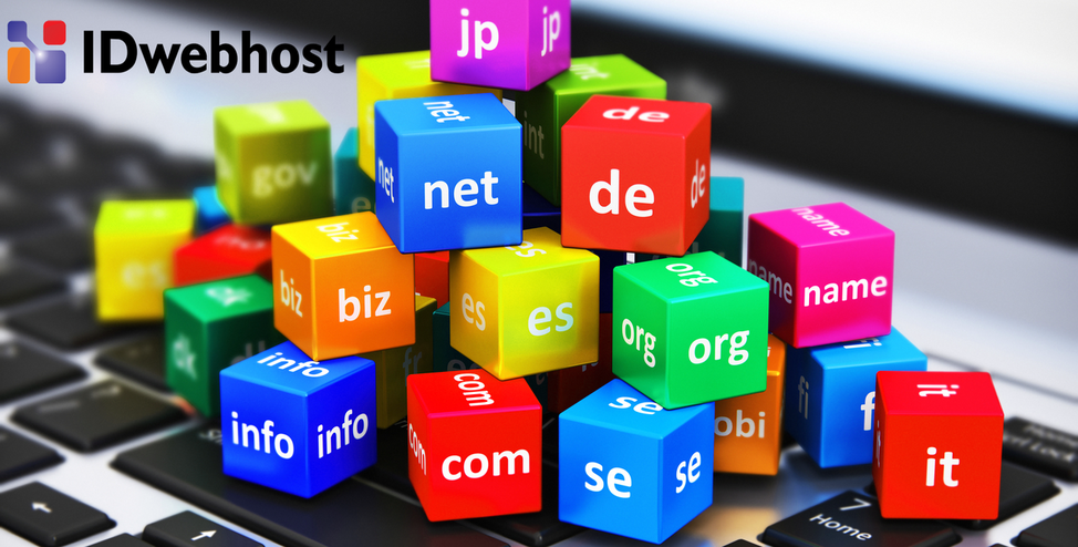 Penjelasan Tentang Domain Untuk Pemula