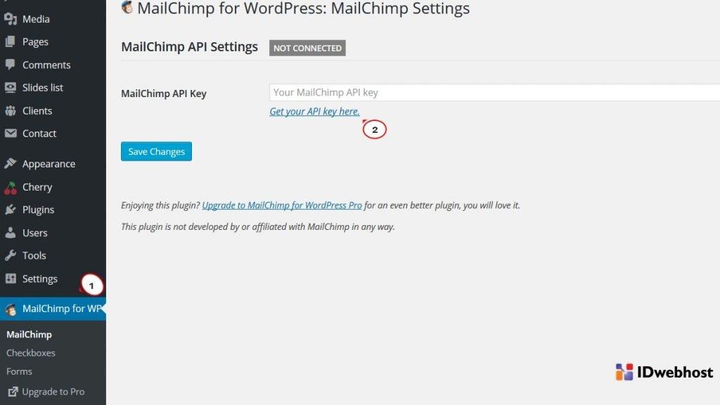 mailchimp untuk wordpress