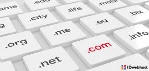 Hal Yang Harus Diwaspadai Saat Memilih Domain