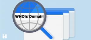 Pembahasan Lengkap Tentang Whois Domain