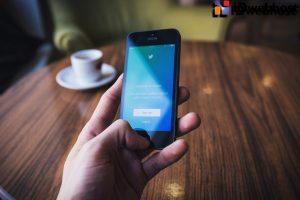 Tips Memilih Tema WordPress Yang Ramah SEO