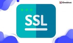 Cara Install SSL Melalui cPanel