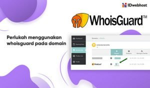 Perlukah Menggunakan Whoisguard Untuk Domain?