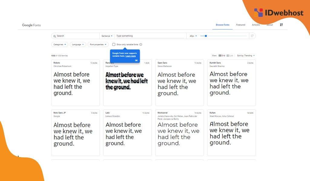 Website Google Font
