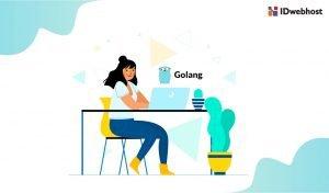 Cara Install GoLang di Hosting yang Aman dan Benar