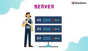 Apa itu Server? Inilah Pengertian, Jenis, Fungsi, serta Cara Kerja Server!