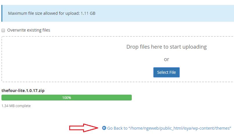 Install Dan Ubah Themes WordPress 10