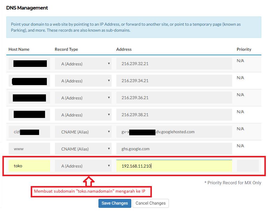 Cara membuat sub-domain di manage DNS domain 4