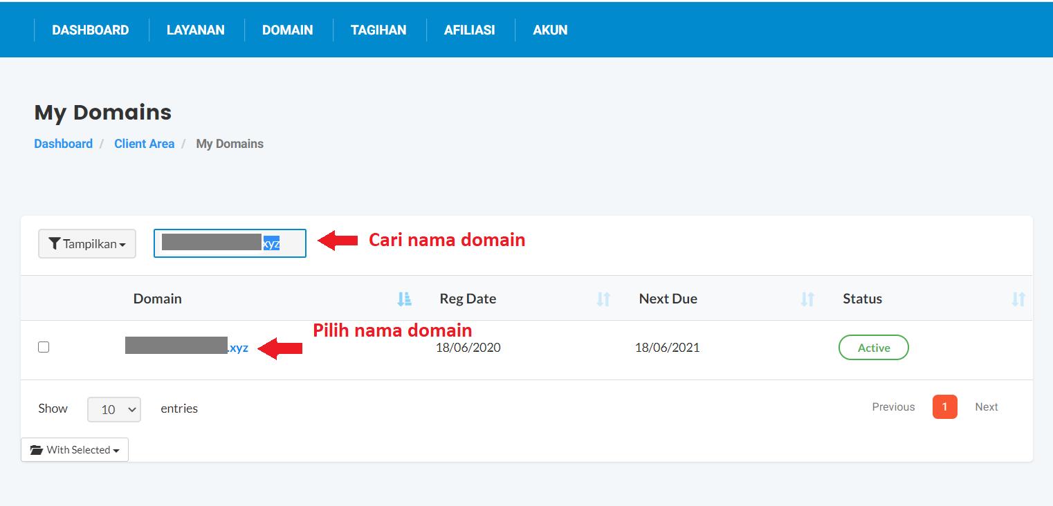 cari dan pilih nama domain